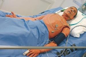 mannequin haute-fidélité simulation